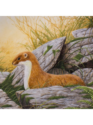 Тарелка Royal Doulton 6219A A Stoat on the Alert