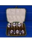 Винтажный комплект из шести посеребренных чайных ложек в оригинальном футляре