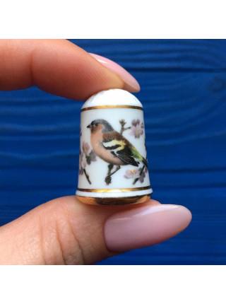 Наперсток Franklin Mint серия с изображением птиц с их латинским названием