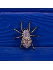 Брошь паук из Англии