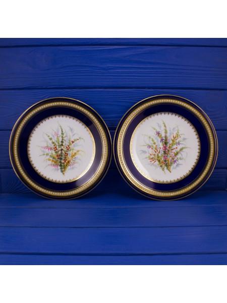 Пара роскошных антикварных тарелок G. Grainger из Англии