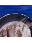 Тарелка Hamilton Collection № 1806A Blue Thunder серии Mystic Warriors