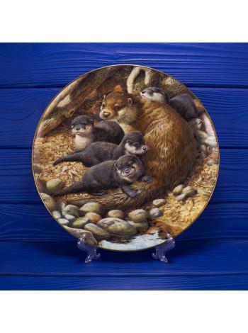 Тарелка Coalport № 638 The Otter (Выдра)