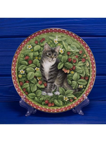 "Тарелка Aynsley ""Gemma"" (Июль) из коллекционной серии 12 месяцев Meet My Kittens"
