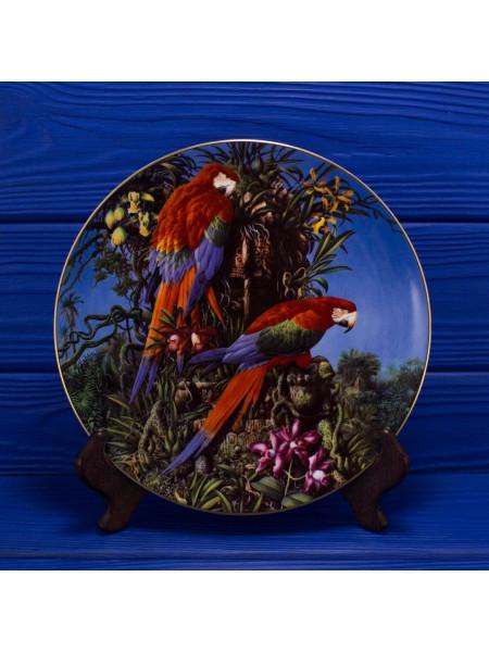 "Декоративная винтажная тарелка № 196 ""Green-einged Macaws"" из коллекционной серии Fragile Paradise от Wedgwood"