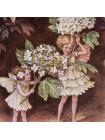 "Тарелка 993 ""The Guelder Rose Fairy"" от Border из коллекционной серии ""The Festival of Flower Fairies"""